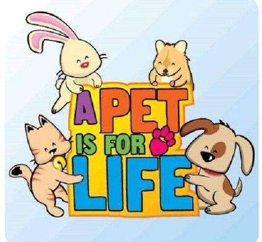 Responsible Pet Ownership Month