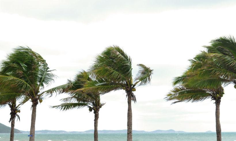 Hurricane Season is almost here!